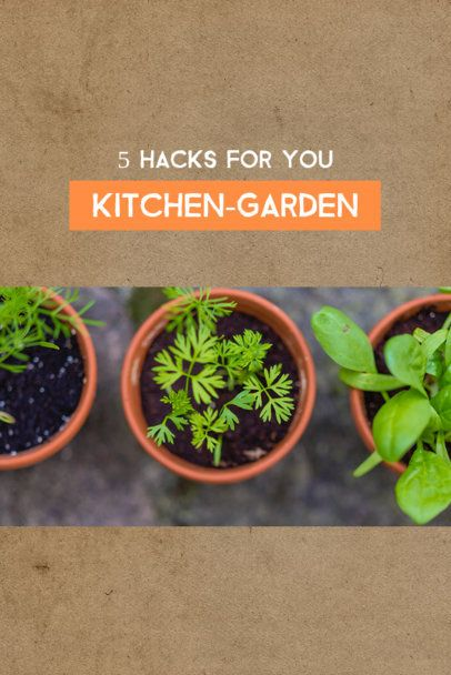 Pinterest Post Maker for Kitchen and Garden Hacks 624b