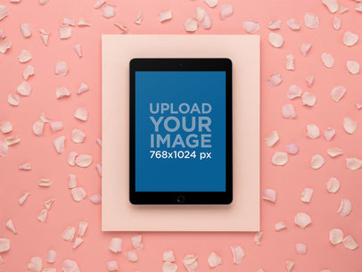 Space Gray iPad Mockup in a Salmon Pink Studio Set 22556
