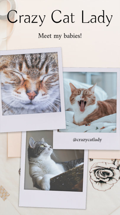 Cute Instagram Story Template for Cat Posts 960a