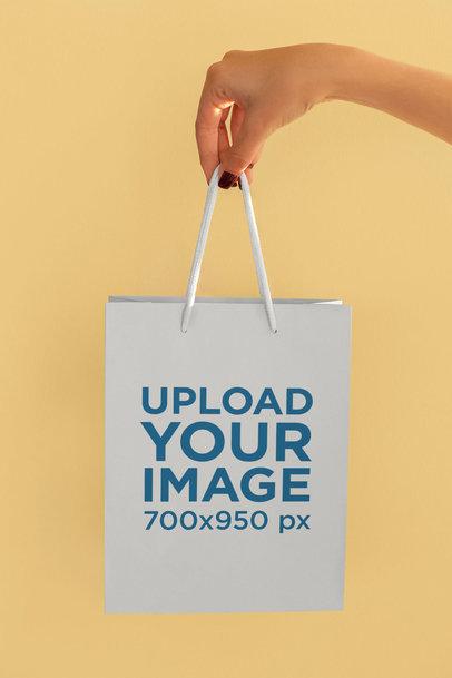 Hand-Held Gift Bag Mockup 24031