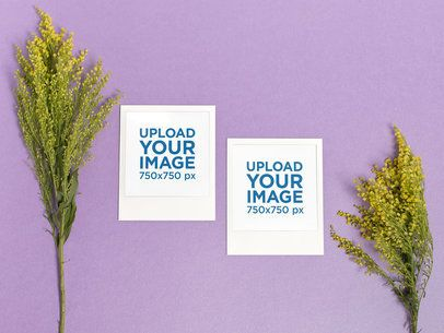 Mockup of Two Polaroid Picture Frames over a Colored Background with Plants 26180