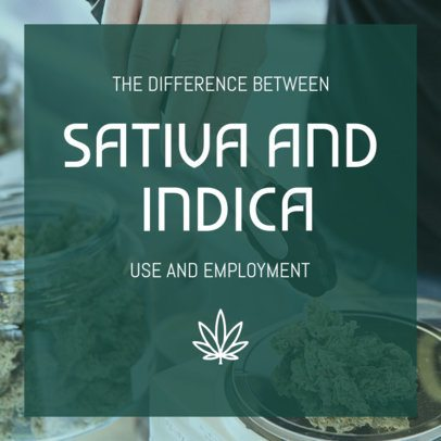 Instagram Post Template on the Use of Sativa and Indica 1891a