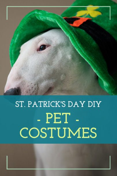 Pinterest Pin Creator for a St. Patrick's Day Pet Costume Post 1885l-2182