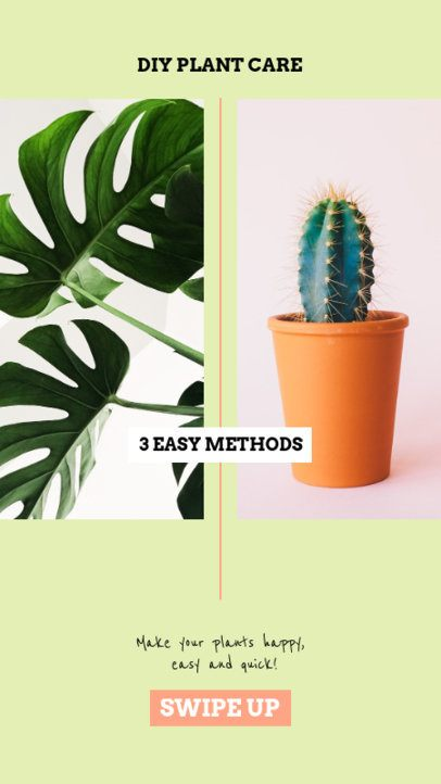 Instagram Story Generator Featuring DIY Plant Care Methods 805c-el1
