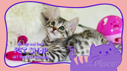 Slideshow Maker Featuring Cute Animated Kitten Graphics 1852