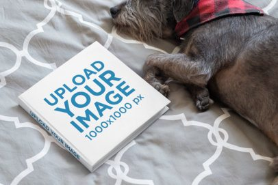 Square Book Mockup Featuring a Small Dog Lying on a Bed 33910