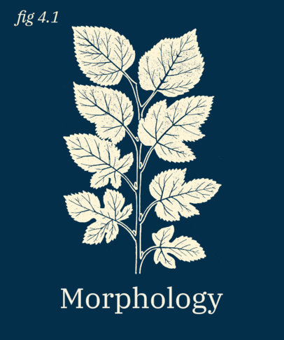 Botanical T-Shirt Design Creator with Plants Graphics 1657c-el1